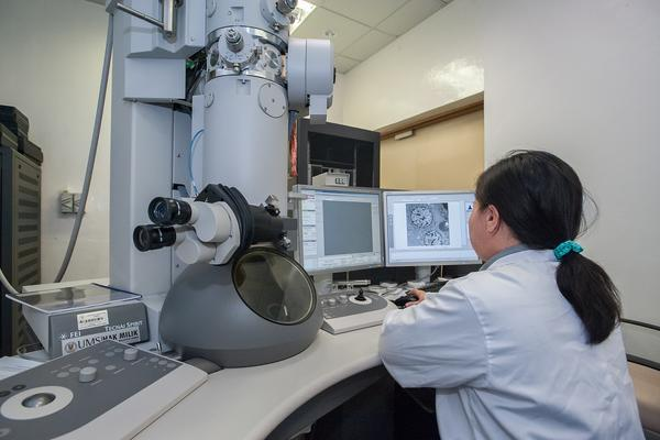 Woman sitting next to a microscope using a computer to see microscope images.